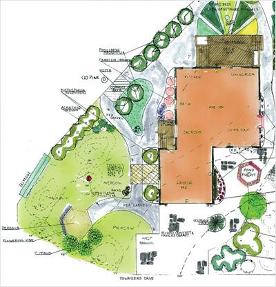 Garden Design Questionnaire